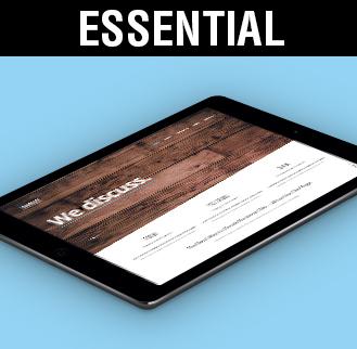 Diseño WEB y posicionamiento de páginas web Madrid Essential