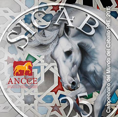 cbaa01889d3 diseño grafico Albacete